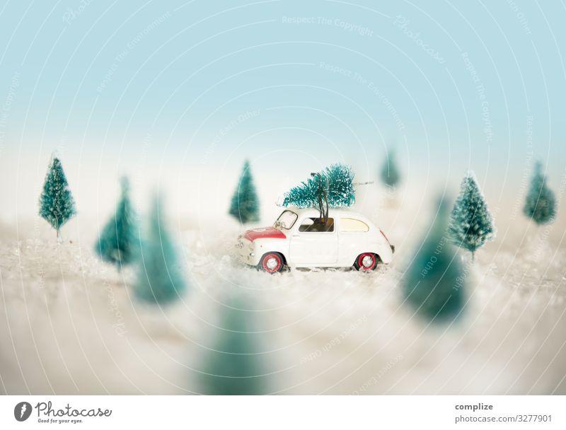 Driving Home for Christmas Tree Lifestyle kaufen Stil Freude Freizeit & Hobby Feste & Feiern Weihnachten & Advent Silvester u. Neujahr Umwelt Natur Landschaft