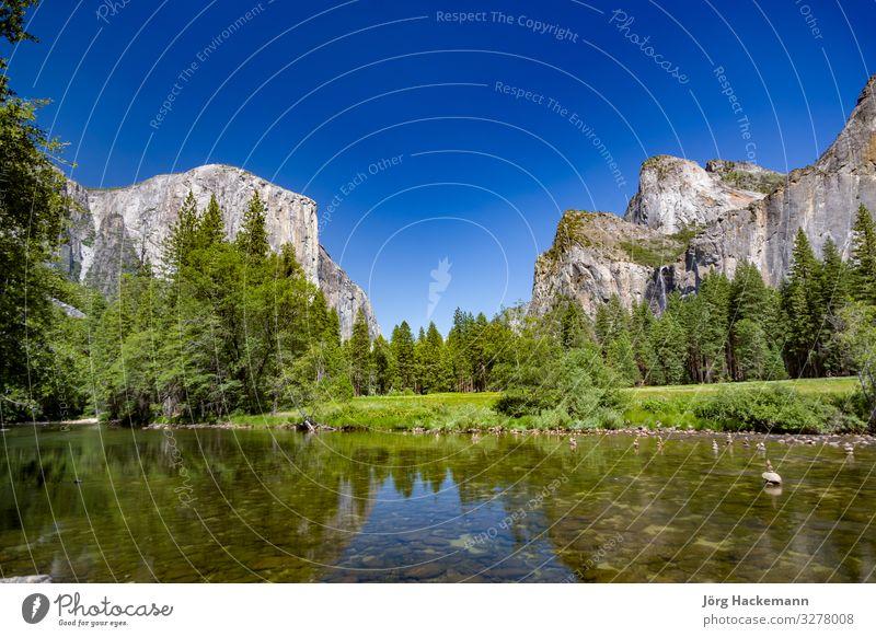 Merced River mit dem berühmten Rock el Captain im Yosemite Valley Natur Landschaft Felsen Fluss Stimmung USA Yosemite NP amerika el capitan fusioniert Farbfoto