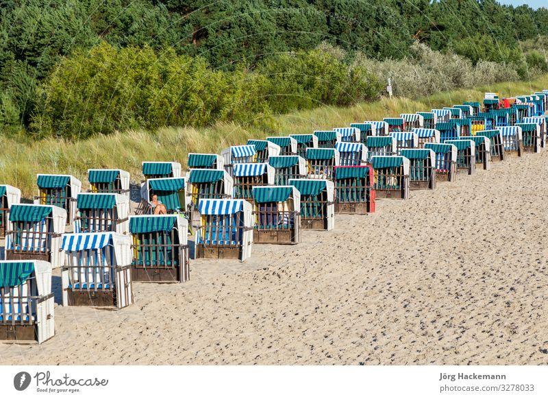 Strand mit Strandkörben in einer Reihe in Zinnowitz, Usedom Ferien & Urlaub & Reisen Tourismus Meer Sand Ostsee alt Strandkorb Düne leer Deutschland typisch
