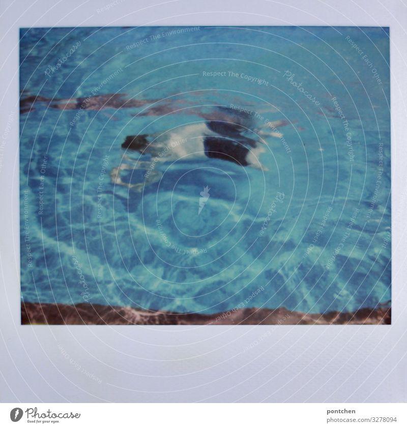 Mann taucht im Schwimmbecken unter Schwimmen & Baden maskulin Erwachsene Jugendliche Körper 1 Mensch 18-30 Jahre 30-45 Jahre 45-60 Jahre