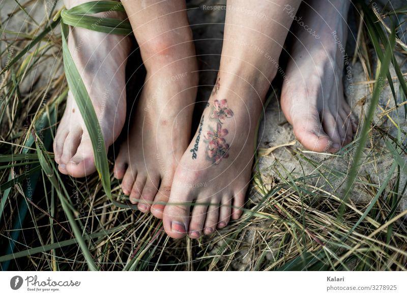 Füße eines Paares am Strand fuss gras barfuss paar nagellack tattoo green frau toe bein sommer nackt natur human leute familie jung ausserhalb körper weiß