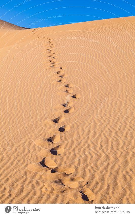 Sanddüne bei Sonnenaufgang in der Wüste mit Menschenspuren schön Ferien & Urlaub & Reisen Abenteuer Safari Natur Landschaft Himmel Wind Wärme Fußspur heiß blau