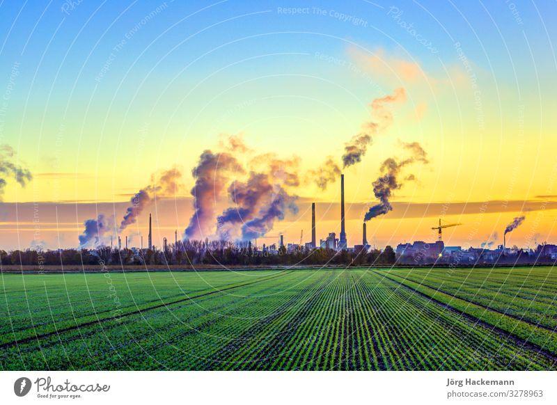 Industriekomplex in Frankfurt am frühen Morgen mit grünen Wiesen Sonne Winter Fabrik Natur Landschaft Pflanze Himmel Wetter Nebel Schornstein hell Energie Farbe