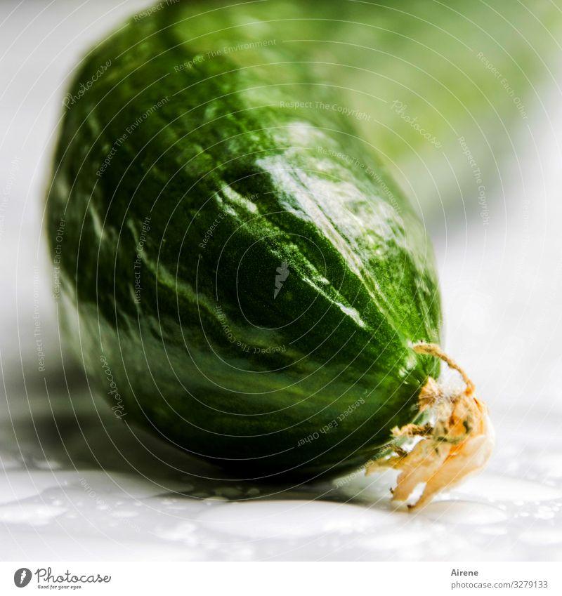 Warum ist die Gurke krumm? Gesunde Ernährung grün Essen frisch Wachstum genießen lecker Bioprodukte Vegetarische Ernährung Diät Vegane Ernährung roh Rohkost