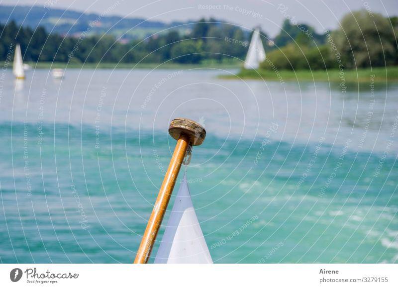 Segel gesetzt und Wetter passt See blau weiß weiß-blau Schönes Wetter Himmel fahren Fahrtwind Bewegung maritim hell Holz Segelschiff ruhig Segelboot Fernweh