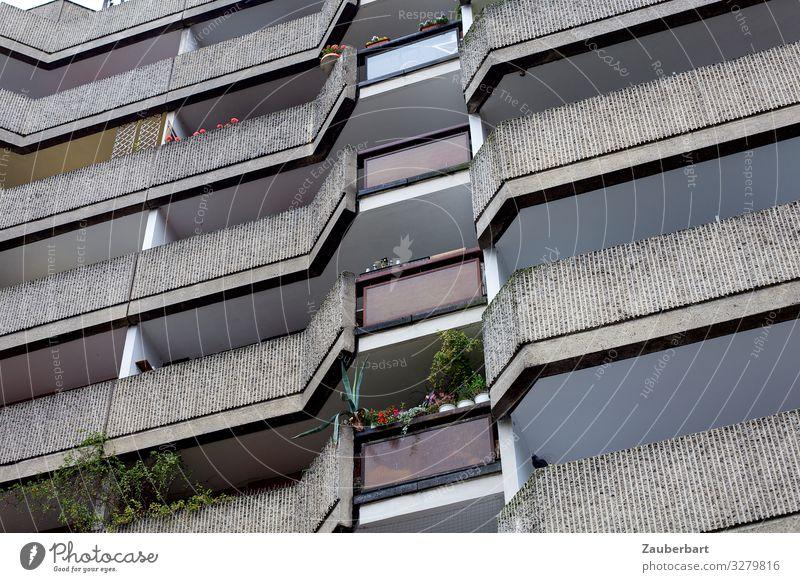 Wohnhaus am Spittelmarkt, Berlin Grünpflanze Topfpflanze Stadt Stadtzentrum Menschenleer Hochhaus Bauwerk Plattenbau Mauer Wand Fassade Balkon Beton