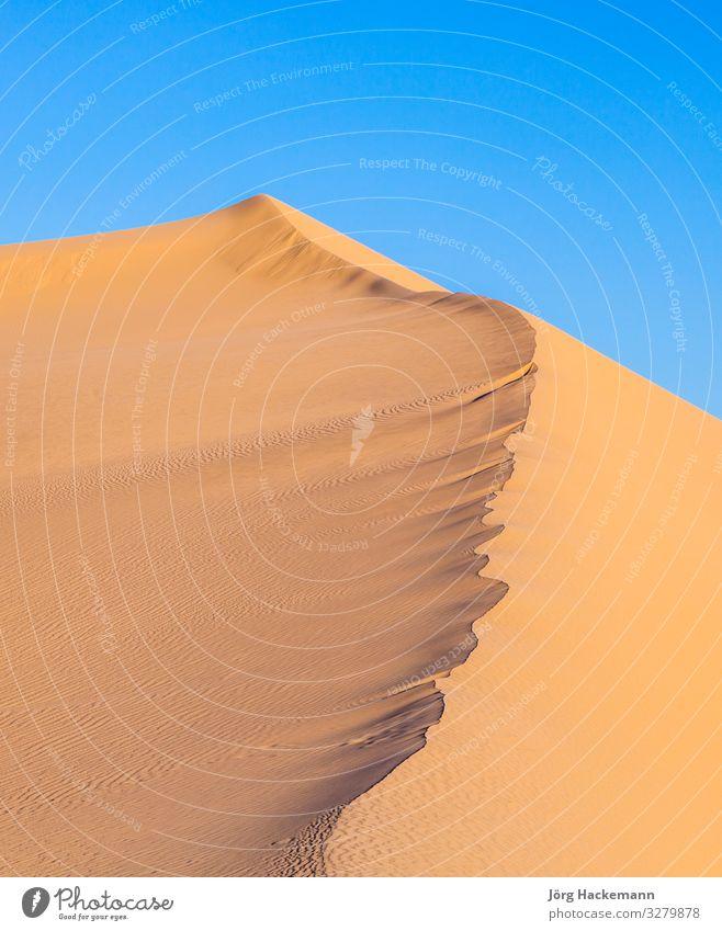 Sanddüne bei Sonnenaufgang in der Wüste schön Ferien & Urlaub & Reisen Abenteuer Berge u. Gebirge Fuß Natur Landschaft Himmel Wind Wärme heiß blau gelb Farbe