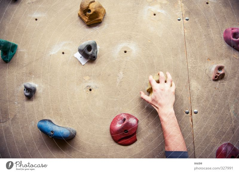 Greifer Mensch Hand Freude Wand Sport Mauer maskulin Arme Freizeit & Hobby hoch Lifestyle Finger Seil Fitness Kunststoff Klettern