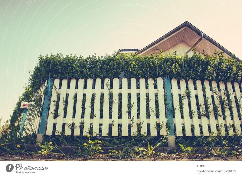 Krabbel-Perspektive Lifestyle Freizeit & Hobby Häusliches Leben Haus Umwelt Himmel Wolkenloser Himmel Sommer Schönes Wetter Briefkasten Dach schön einzigartig