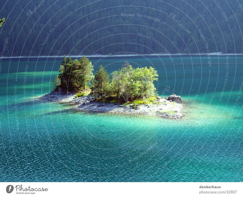 Die Insel Baum grün Einsamkeit See Amerika türkis