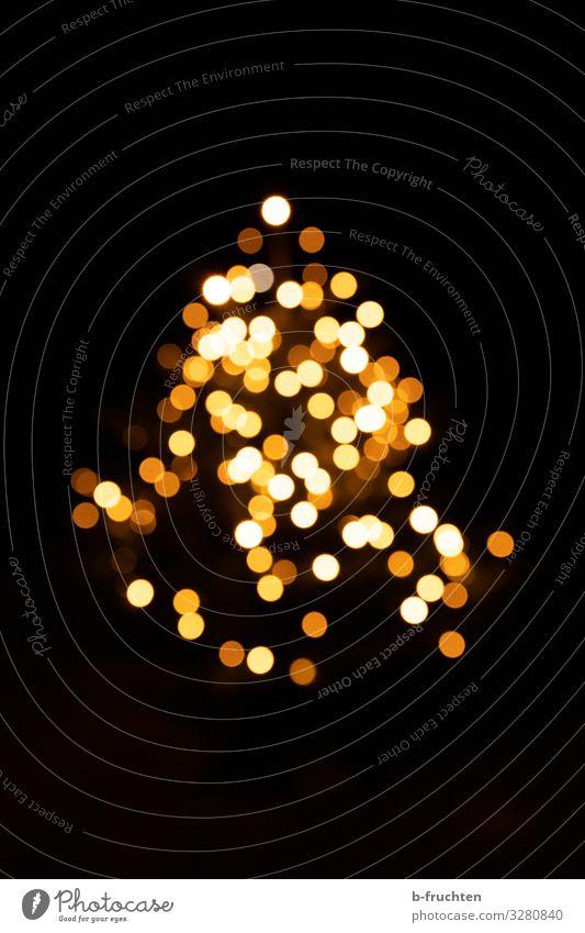 Christbaum brennt Ferien & Urlaub & Reisen Nachtleben Party Feste & Feiern Weihnachten & Advent Silvester u. Neujahr Dekoration & Verzierung Zeichen beobachten