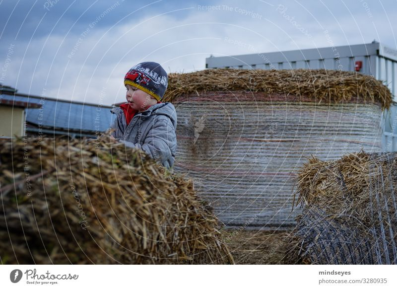 Im Stroh Freizeit & Hobby Spielen Ausflug Bauernhof Kind Junge 1 Mensch 1-3 Jahre Kleinkind Wolken schlechtes Wetter Strohballen Jacke Mütze Bewegung entdecken