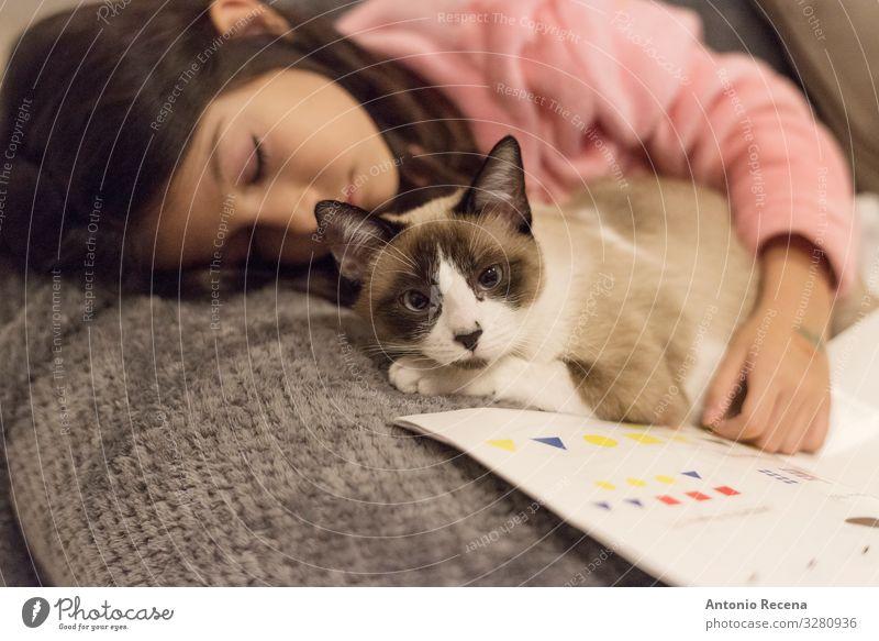 Das Mädchen und die Katze Lifestyle lesen Sofa Kind Frau Erwachsene Buch Haustier Streifen schlafen Müdigkeit schlafend Bett kuscheln Katzenkuscheln