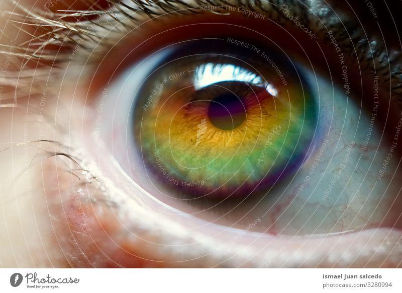 Regenbogen auf dem Auge Gesicht Pupille Mann Mensch Symbole & Metaphern Farbe mehrfarbig Regenbogenflagge Homosexualität Stolz Vielfalt Toleranz Öffnung