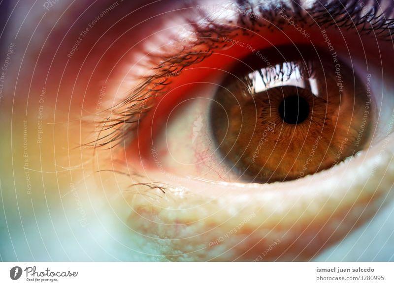 Regenbogen auf dem Auge, schöne Farben Wimpern mehrfarbig Körperteil Blick Pupille Regenbogenhaut Mensch Haut Vielfalt Stolz Toleranz Beautyfotografie