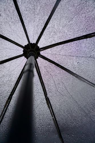 schwarzer Regenschirm bei Regenwetter Objektfotografie Hintergrundbild Stillleben sehr wenige Wasser nass Schutz Wetter Jahreszeiten Tropfen
