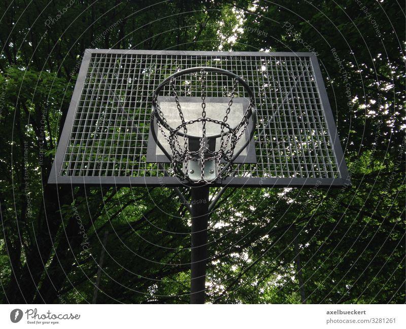Streetball oder Street Basketball Korb Lifestyle Freizeit & Hobby Spielen Sport Ballsport Sportstätten Baum Park Basketballkorb streetball Basketballplatz