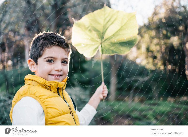Süßes Kind mit gelber Weste, das ein großes Blatt hält Lifestyle Freude Glück schön Leben Freizeit & Hobby Ausflug Garten Mensch maskulin Kleinkind Junge