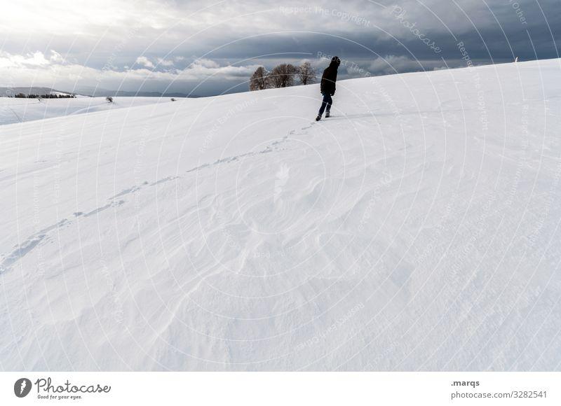 Eiszeit | Unwetter Abenteuer Mensch 1 Umwelt Natur Landschaft Gewitterwolken Winter Frost Schnee authentisch kalt Stimmung Klima Wege & Pfade Zukunft Farbfoto