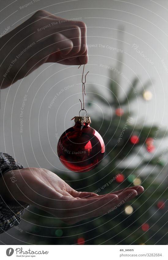 Christmas Decoration Feste & Feiern Weihnachten & Advent Leben Hand Baum Fichte Tanne Weihnachtsbaum Zeichen festhalten glänzend hängen leuchten gold grün rot