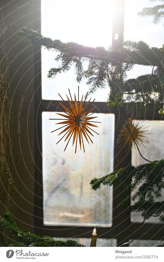 Weihnachten Erholung ruhig Weihnachten & Advent Kirche warten Freude Lebensfreude Vorfreude Weihnachtsbaum Stern Gottesdienst Farbfoto Innenaufnahme