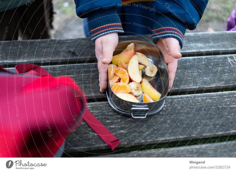 Picknick Lebensmittel Frucht Essen Dose wandern Pause lecker Gesunde Ernährung Farbfoto Außenaufnahme