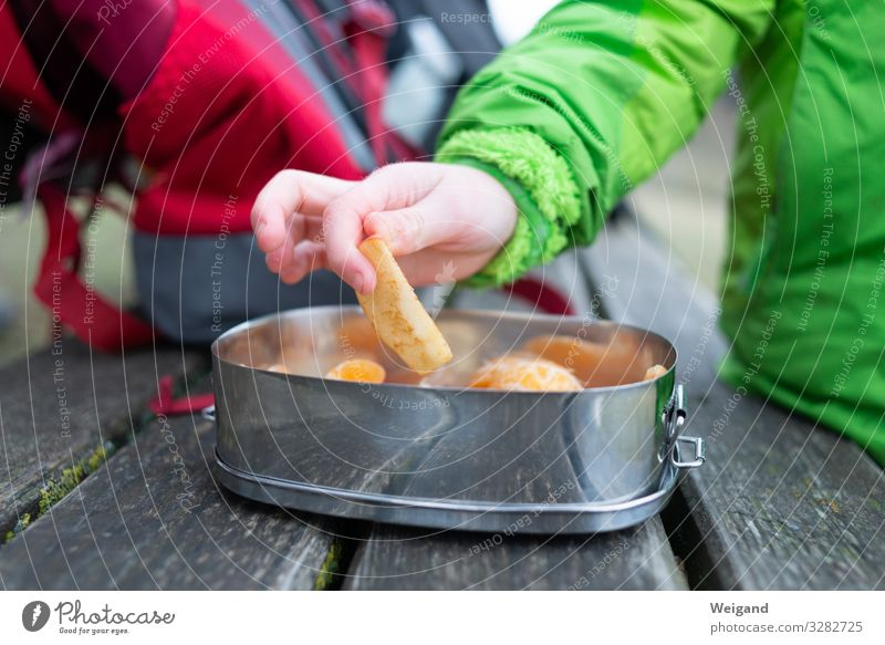 Picknick Lebensmittel Frucht Apfel Bioprodukte Vegetarische Ernährung Slowfood Geschirr Schalen & Schüsseln Essen lecker Appetit & Hunger Dose Gesunde Ernährung