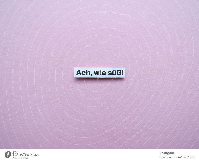 Ach, wie süß! Kommunizieren niedlich Wort Satz Buchstaben Text Typographie Schriftzeichen Sprache Lateinisches Alphabet Letter Kommunikation Verständigung