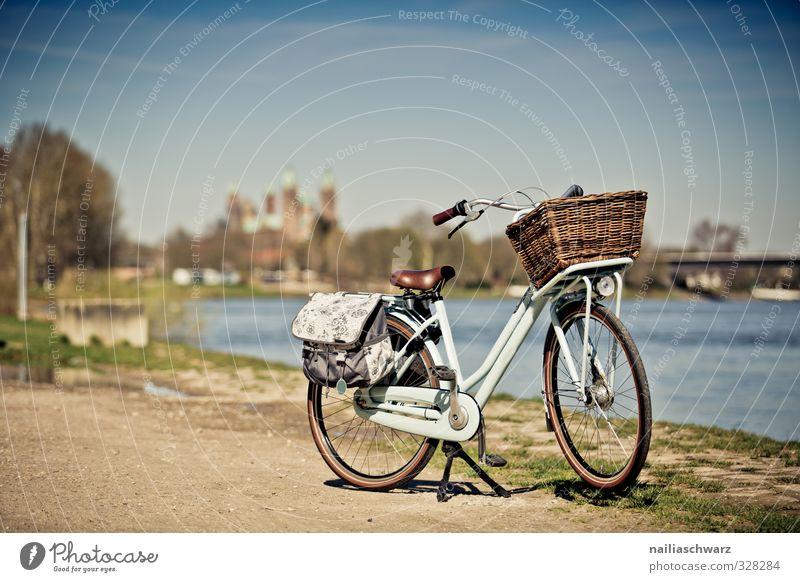 Am Rhein Tourismus Ausflug Fahrradtour Landschaft Fluss Speyer Rheinland-Pfalz Stadt Stadtrand Menschenleer Brücke Sehenswürdigkeit Wahrzeichen