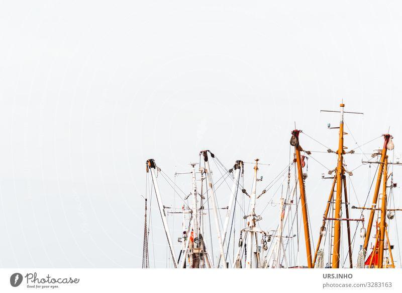 Schiffsmasten vor hellem Hintergrund Segeln Segelboot maritim braun grau weiß Ferien & Urlaub & Reisen Mast Mastbaum Farbfoto Außenaufnahme Menschenleer