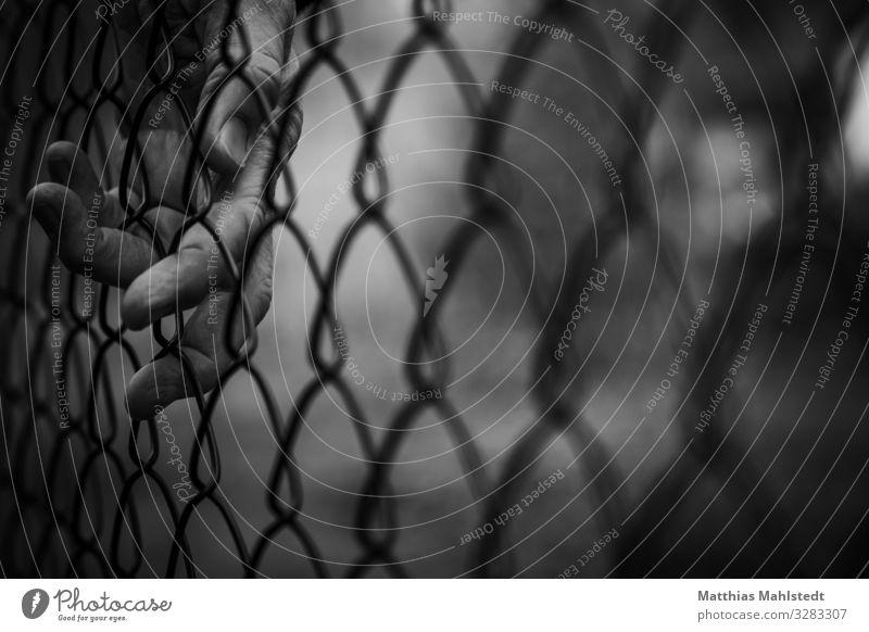 Border Hand Zaun Metall berühren dunkel schwarz weiß Gefühle Sorge Sehnsucht Fernweh Einsamkeit Platzangst Überwachung Verbote Schwarzweißfoto Außenaufnahme
