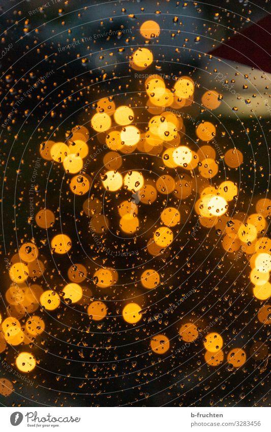 Weihnachtsbaum im Regen Nachtleben Veranstaltung Feste & Feiern Weihnachten & Advent Baum Zeichen beobachten leuchten Blick glänzend Glück gold Wassertropfen