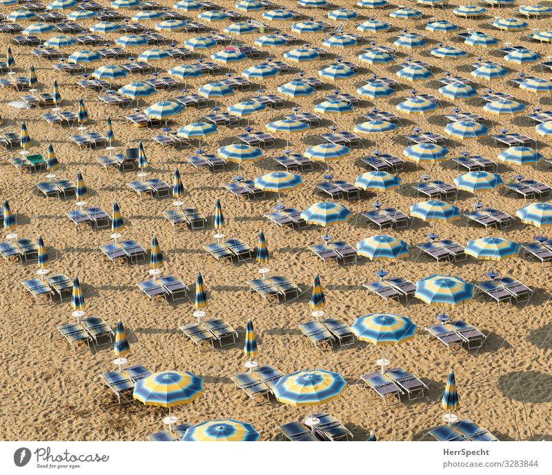 Freilandhaltung an der Adria Ferien & Urlaub & Reisen Tourismus Sommer Sommerurlaub Strand Lido di Jesolo Italien Veneto ästhetisch maritim Sauberkeit braun