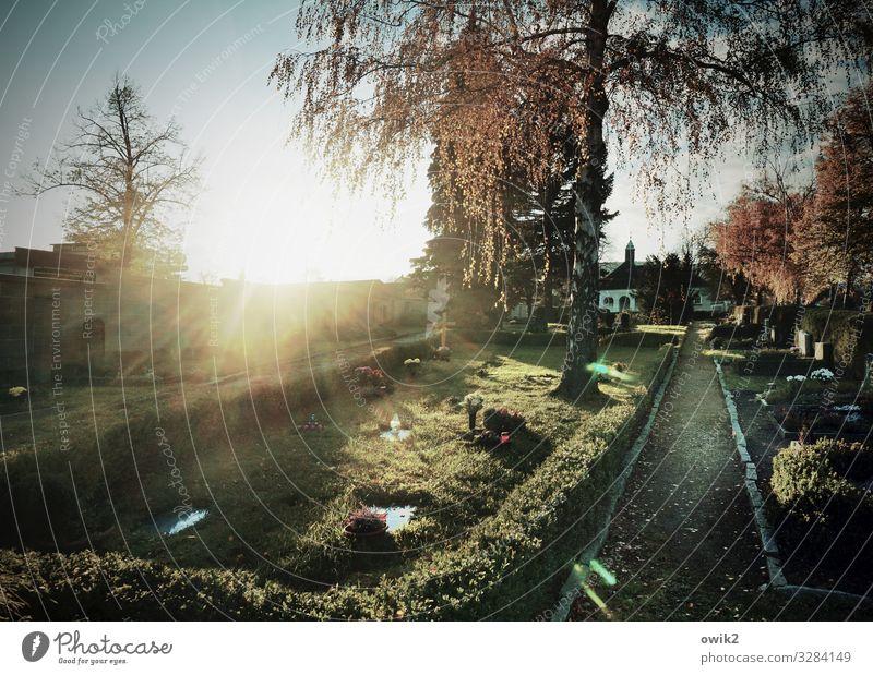 Kreuzweg Umwelt Natur Wolkenloser Himmel Sonne Herbst Schönes Wetter Baum Gras Hecke Friedhof Grab Wege & Pfade leuchten hell trösten ruhig Hoffnung Glaube