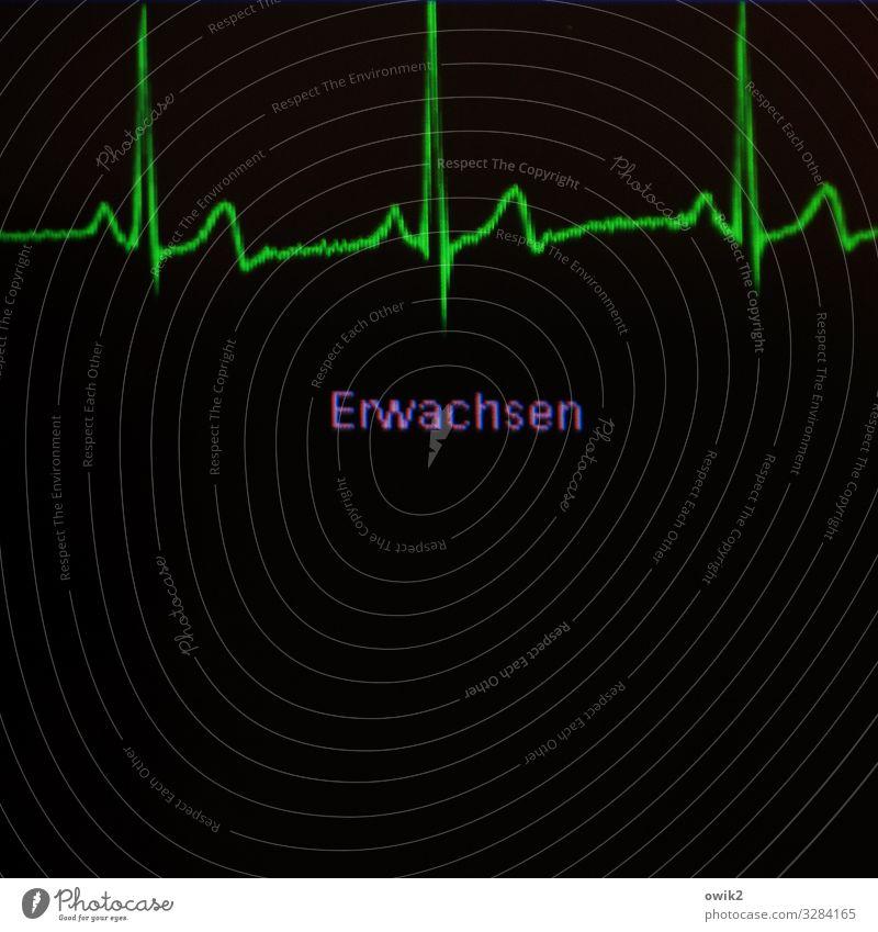 EKG Bildschirm EGK Elektrokardiogramm Puls Frequenz Herz-/Kreislauf-System Anzeige Kurve Kunststoff Zeichen Schriftzeichen grün violett schwarz Endzeitstimmung