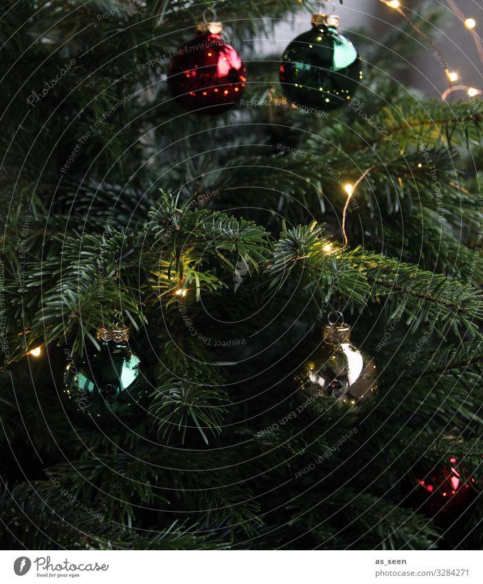 Christmastree Häusliches Leben Innenarchitektur Dekoration & Verzierung Weihnachten & Advent Pflanze Baum Fichte Tanne Weihnachtsbaum Holz Glas Metall Zeichen