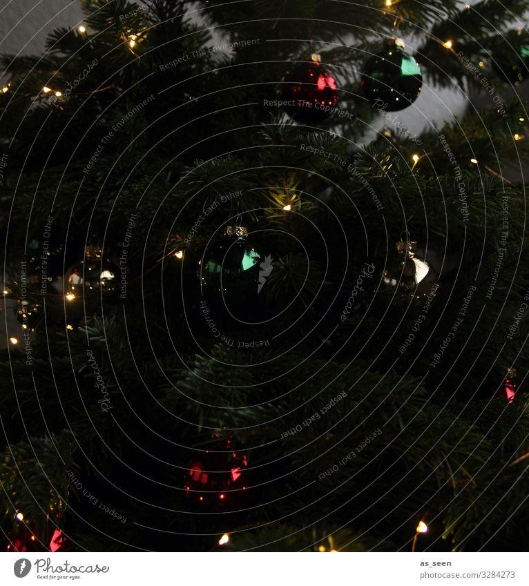 Geheimnisvoll Häusliches Leben Wohnung Dekoration & Verzierung Wohnzimmer Weihnachten & Advent Silvester u. Neujahr Pflanze Baum Tanne Fichte Zeichen
