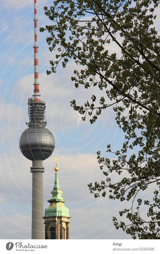Berliner Fernsehturm neben einem Kirchturm Umwelt Natur Baum Kirche Turm Bauwerk Gebäude Architektur Sehenswürdigkeit Wahrzeichen stehen ästhetisch