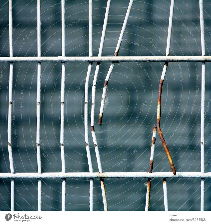 Geschichten vom Zaun (63) Mauer Wand Gitter Metall Rost Linie eckig hässlich kaputt rebellisch Spitze stachelig trashig Stadt Müdigkeit Erschöpfung Stress