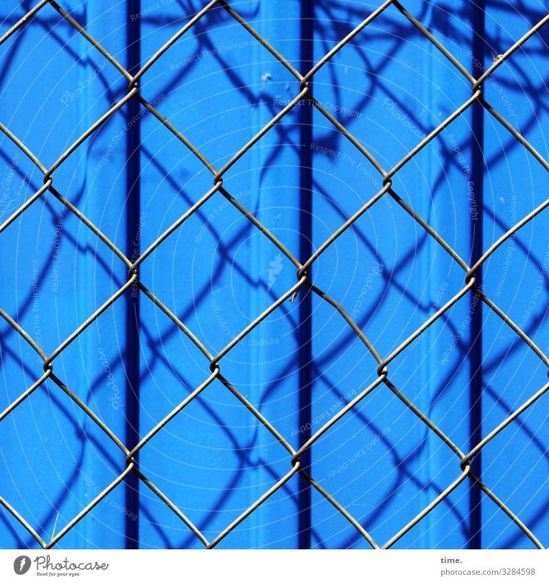 Geschichten vom Zaun (68) Baustelle Schönes Wetter Container Gitter Maschendraht Maschendrahtzaun Metall Stahl Linie Streifen blau Stimmung Sicherheit Schutz