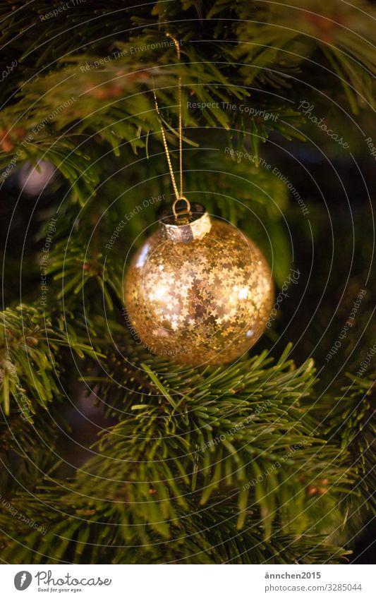 Eine goldene Weihnachtsbaumkugel mit Sternen hängt an einem grünen Tannenzweig glänzend Schmuck Jahreszeit weihnachten Fest feiern Dezember Heiligabend