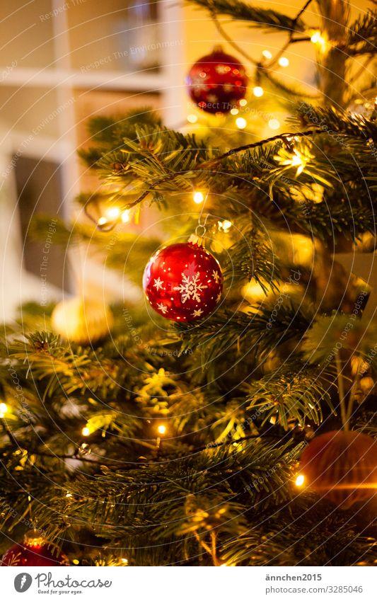 Ein Tannenbaum geschmückt mit roten Kugeln Glitzernd glänzend Weihnachten Weihnachten & Advent Weihnachtsbaum Weihnachtsdekoration Dekoration & Verzierung