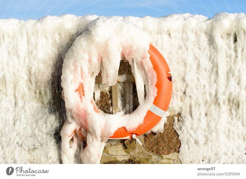 Winter an der See I blau weiß kalt Mauer orange Eis Sicherheit Hafen gefroren hängen maritim Rettung Eiszapfen Rettungsring Notfall