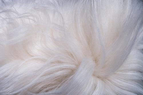 pelzige weiße zottelige Hintergrundtextur Tapete Tier Fell schön modern wild weich Konsistenz haarig Detailaufnahme abstrakt Teppich Sauberkeit Nahaufnahme