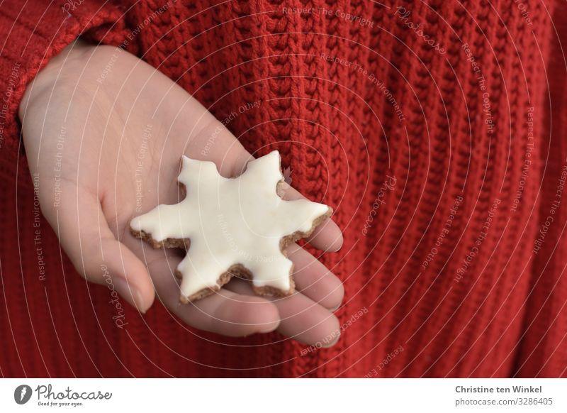 weibliche Hand hält ein weißes Plätzchen in Schneeflockenform; roter Strickpullover als Hintergrund Lebensmittel Teigwaren Backwaren Süßwaren Weihnachtsgebäck