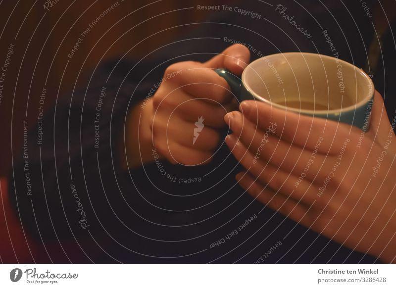 weibliche Hände halten eine Tasse mit Kaffee Getränk Heißgetränk Becher feminin Junge Frau Jugendliche Hand 18-30 Jahre Erwachsene festhalten ästhetisch