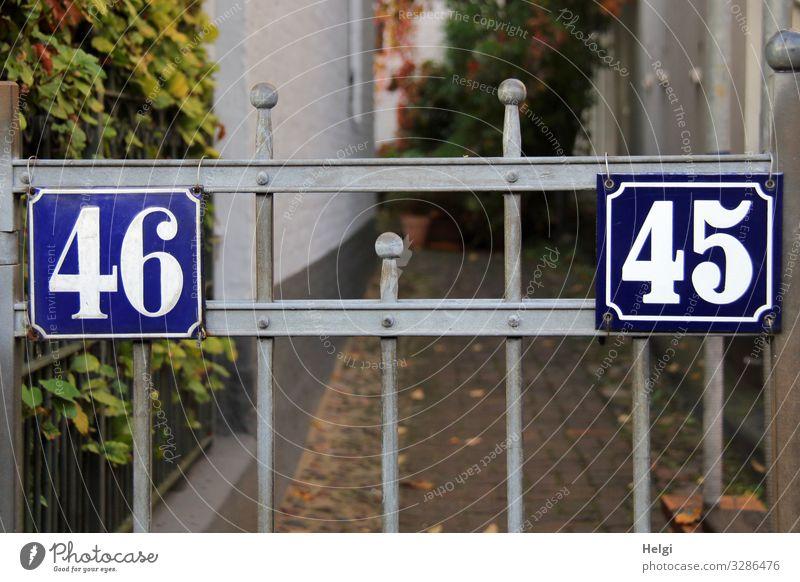 Pforte mit Hausnummern 45 und 46 Pflanze Blatt Hamburg Stadt Hafenstadt Mauer Wand Tor Wege & Pfade Stein Metall Ziffern & Zahlen festhalten stehen
