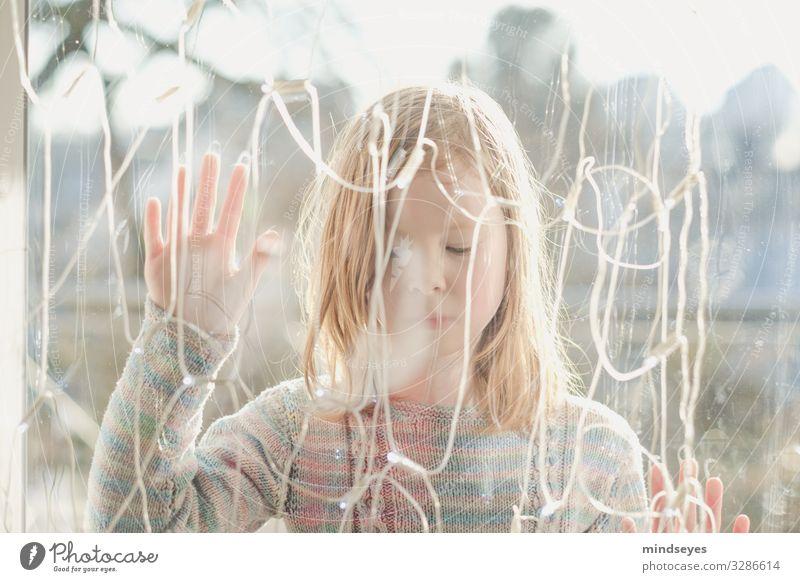 Vor der Scheibe I Häusliches Leben Haus Dekoration & Verzierung Lichterkette Mädchen 1 Mensch 3-8 Jahre Kind Kindheit leuchten träumen warten hell einzigartig