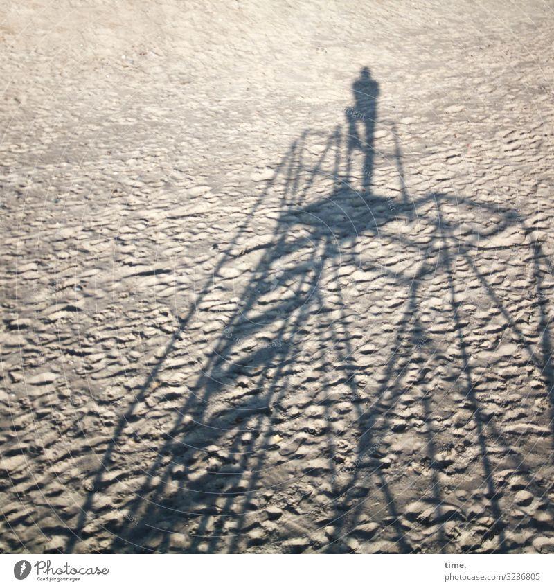 top of the beach maskulin Mann Erwachsene 1 Mensch Sand Herbst Schönes Wetter Strand Ostsee Baugerüst Gerüst Stahl Linie Streifen stehen hoch oben trist Design