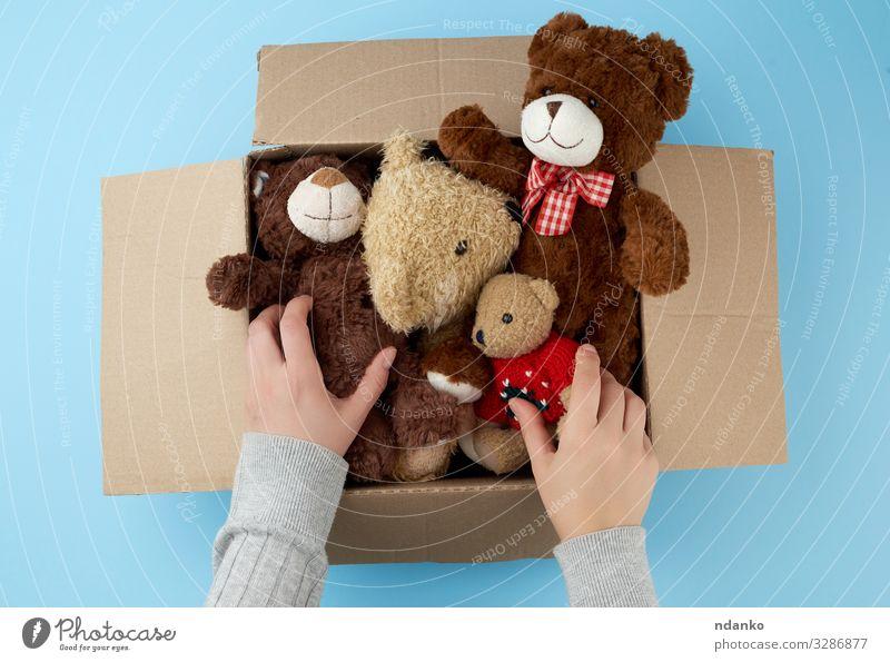 Karton mit verschiedenen Teddybären Kind Baby Frau Erwachsene Kindheit Hand Menschengruppe Tier Container Spielzeug Puppe Sammlung klein niedlich retro weich